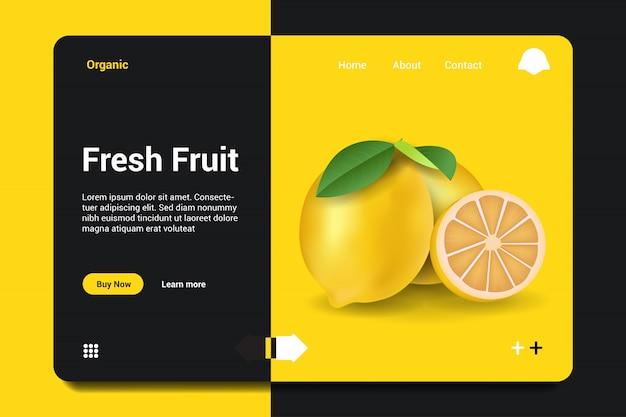 Fond de page d'atterrissage de fruits frais.