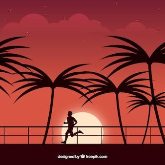 Fond de palmier