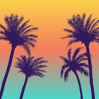 Fond de palmiers