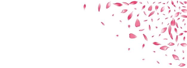 Fond panoramique de vecteur de pétale de rose transparent. conception de pétales de pêche au sol pastel. félicitations de vol de pétale de lotus. modèle de pétale de fleur de beauté.