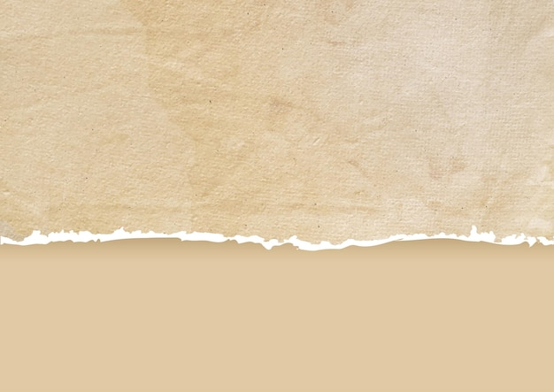 Fond de papier déchiré grunge détaillé