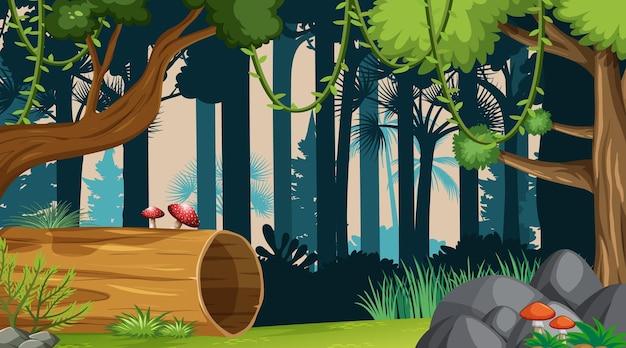 Fond de paysage de forêt nature