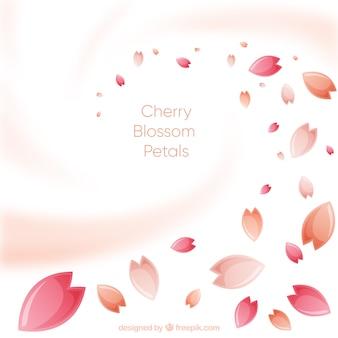 Fond de pétales de fleur de cerisier