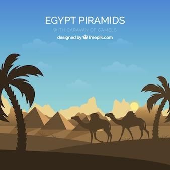 Fond de piramides en egypte