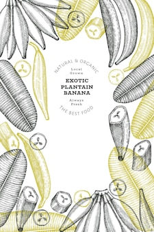 Fond de plantain de style croquis dessinés à la main. fruits frais bio. banane exotique rétro
