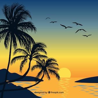 Fond plat coucher de soleil avec des palmiers