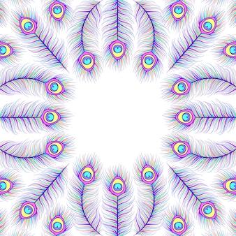 Fond avec des plumes de paon colorées