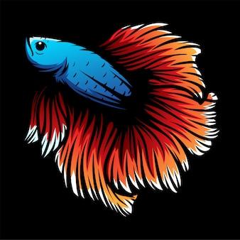 Fond de poisson betta coloré