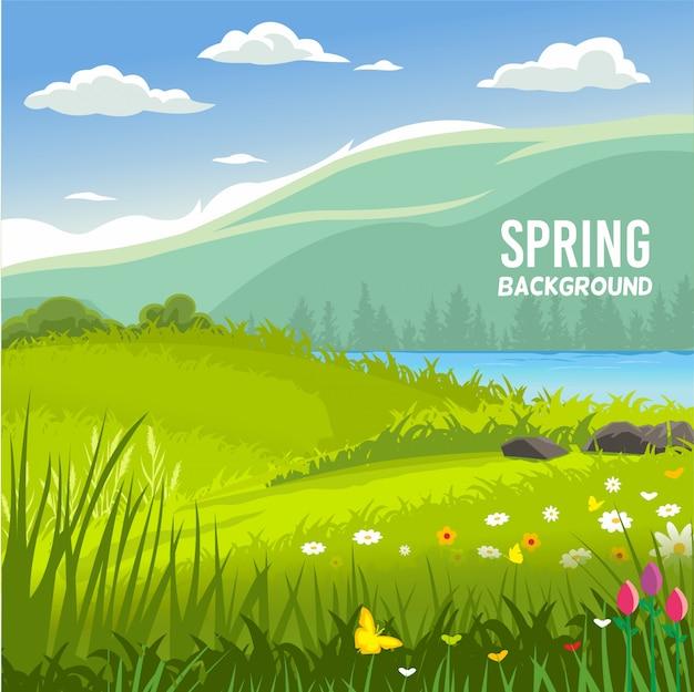Fond de printemps de champ de fleurs