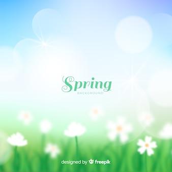 Fond de printemps de champ flou