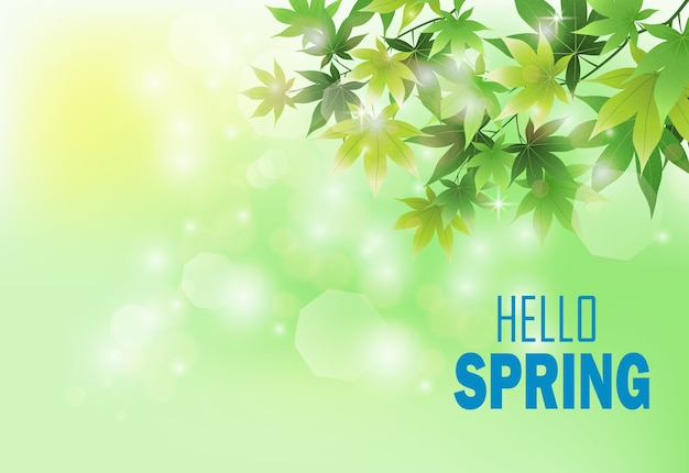 Fond de printemps avec des feuilles vertes fraîches