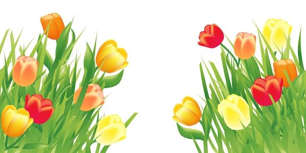 Fond de printemps avec des fleurs