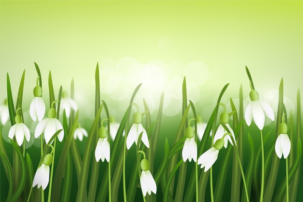 Fond de printemps flou réaliste
