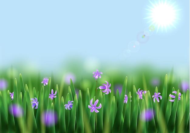 Fond de printemps avec soleil, prairie et fleurs