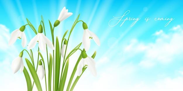 Fond réaliste horizontal de fleur de perce-neige avec illustration de symboles de printemps