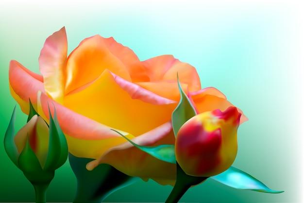 Fond avec rose jaune en fleurs