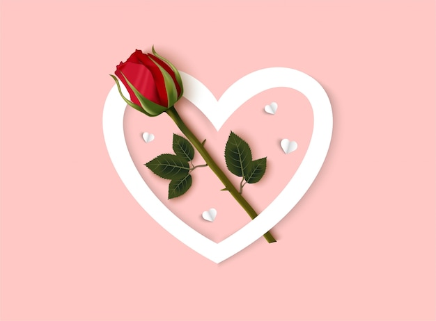 Fond rose saint valentin avec rose