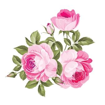 Fond avec des roses.