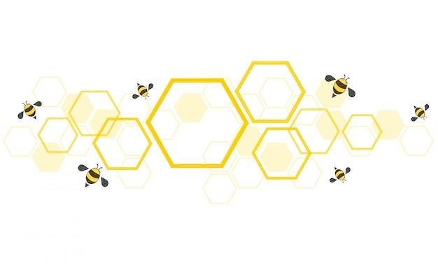 Fond de ruche
