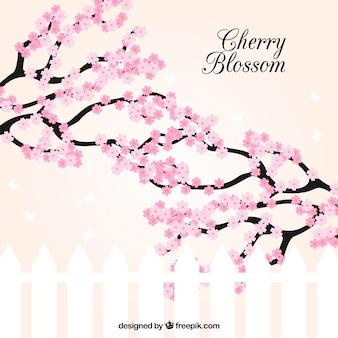 Fond de sakura au design plat