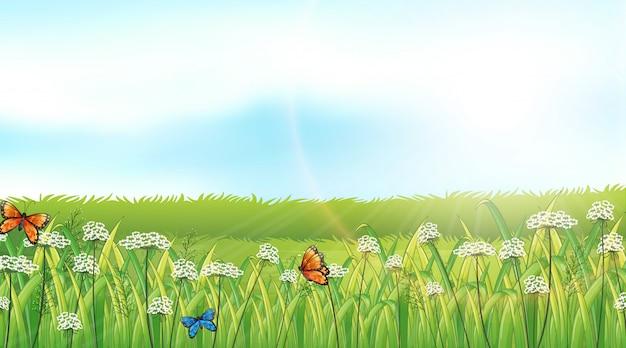 Fond de scène de nature avec des papillons dans le jardin