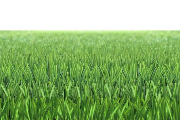 Fond de terrain de football en herbe