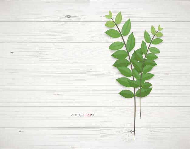 Fond de texture bois avec des feuilles vertes. illustration vectorielle réaliste.