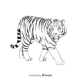 Fond de tigre