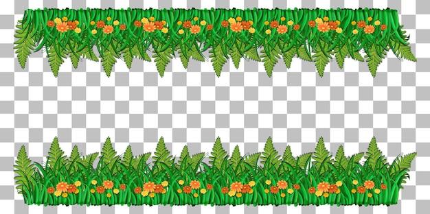 Fond transparent de cadre de plantes de la nature