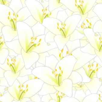 Fond transparent de fleur de lys blanc