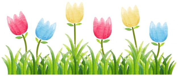 Fond transparent avec des tulipes colorées dans le jardin