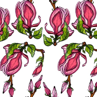 Fond transparent de vecteur avec des fleurs de magnolia.