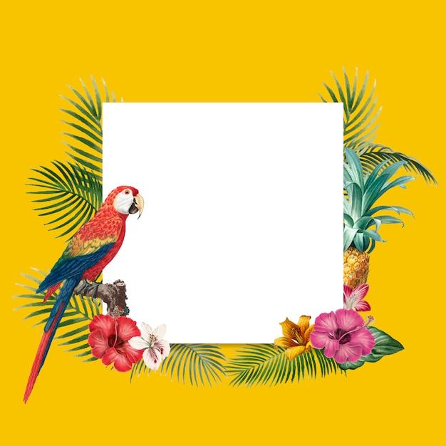 Fond tropical blanc