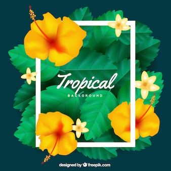 Fond tropical coloré avec un design réaliste