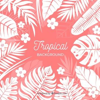 Fond tropical coloré avec des feuilles et des fleurs