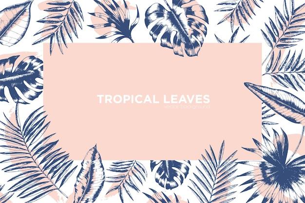 Fond tropical décoré par un cadre composé de branches de palmiers exotiques, de monstera et de feuilles de bananier
