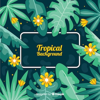 Fond tropical dessiné à la main
