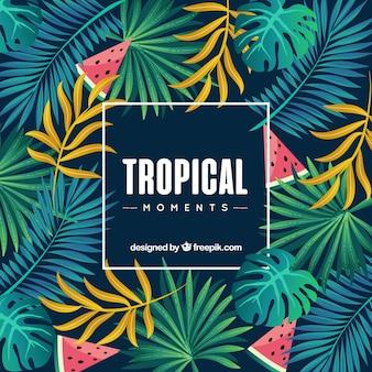 Fond tropical avec différentes espèces de plantes