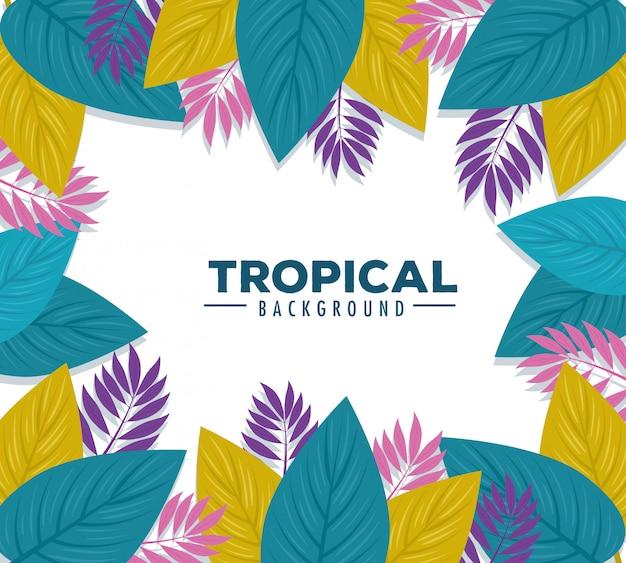 Fond tropical, feuilles de couleurs violettes, roses et vertes, décoration avec des feuilles tropicales