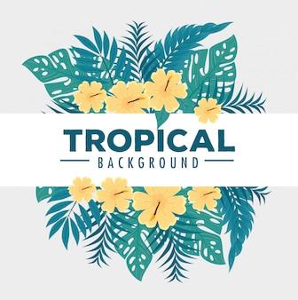 Fond tropical, fleurs de couleurs jaunes avec des branches et des feuilles tropicales, décoration avec des fleurs et des feuilles tropicales