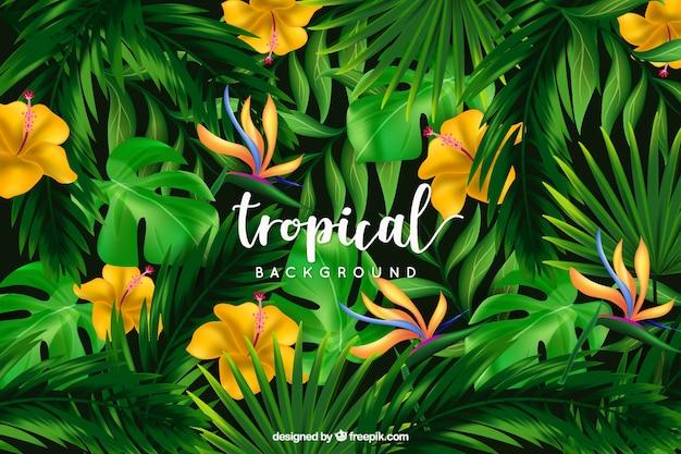 Fond tropical avec des fleurs sauvages