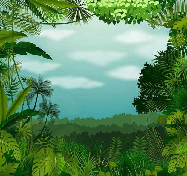 Fond tropical magnifique avec des nuages et du ciel
