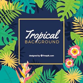 Fond tropical avec des plantes colorées
