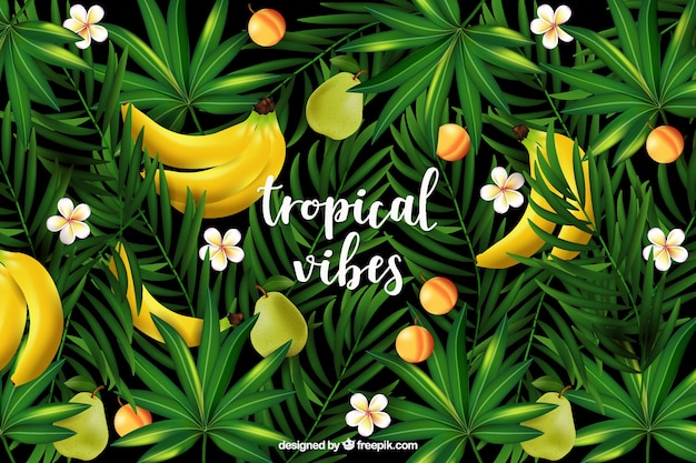 Fond tropical réaliste