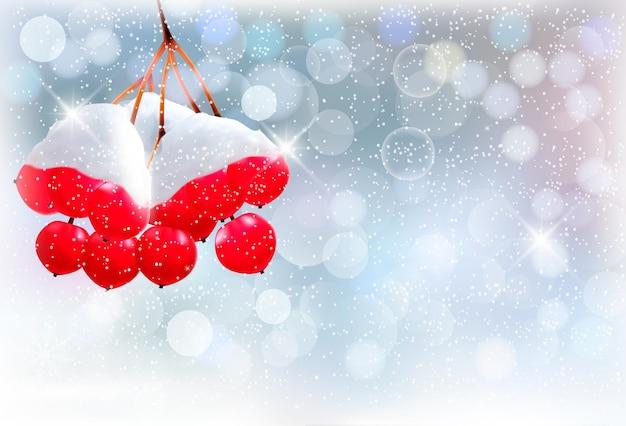 Fond de vacances avec branche de noël aux fruits rouges.