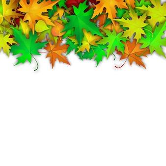 Fond de vecteur avec des feuilles d'automne colorées