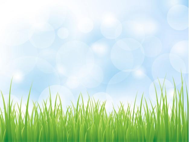 Fond de vecteur avec de l'herbe verte