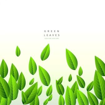 Fond vert chute de longues feuilles