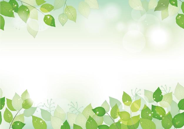 Fond vert frais aquarelle transparente avec espace de texte, illustration vectorielle. image respectueuse de l'environnement avec les plantes et la lumière du soleil. répétable horizontalement.