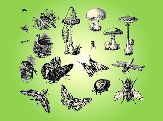 Forêt avec des animaux et des plantes